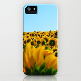 Do as the sunflowers do iPhone Case