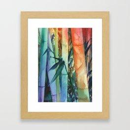Kauai Rainbow Bamboo 2 Framed Art Print