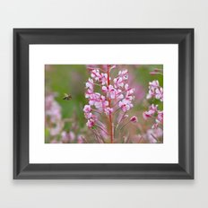 Fireweed 3990 Framed Art Print