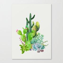 Cactus Garden II Canvas Print