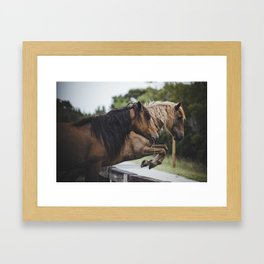 jumping ponies Framed Art Print