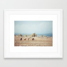 Oregon Wilderness Horses Framed Art Print
