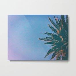 Palm Tree Crown  Metal Print