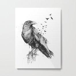 Born to be free (bw) Metal Print