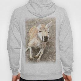 Kangaroo Kiss Hoody