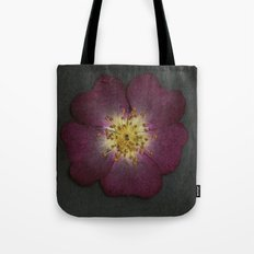 Pressed Wild Rose Tote Bag