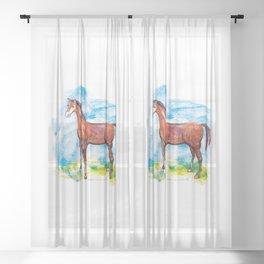 Horse colourfull illustration Sheer Curtain