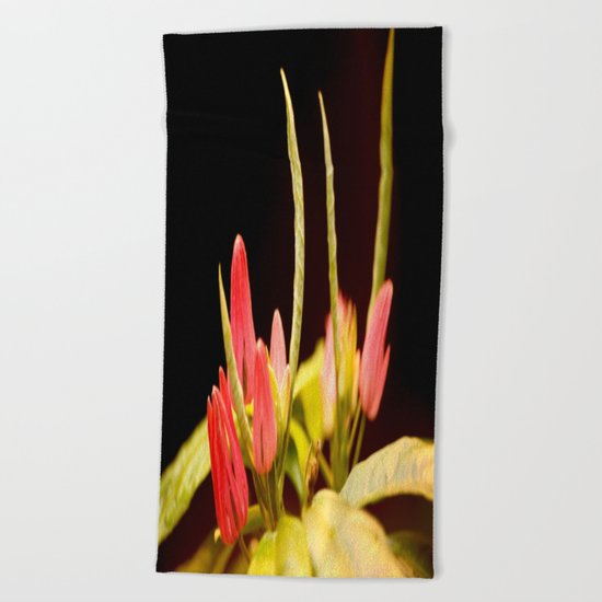 Exotic Colorful Flowers Beach Towel