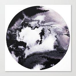 titanium white / carbon black / silver Canvas Print