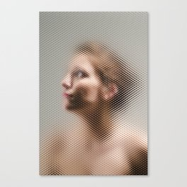 Through The Screen #2 Canvas Print