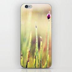Never Look Back iPhone & iPod Skin