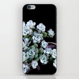 Sedum Clavatum iPhone Skin