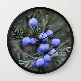 Macro Juniper Berries Wall Clock