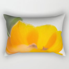 Radiance IV Rectangular Pillow