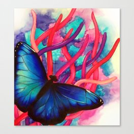 Upclose butterfly Canvas Print