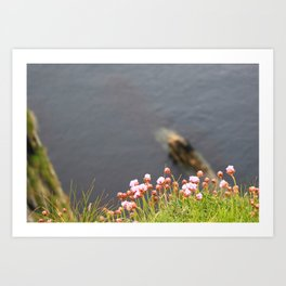 Flowers on the Edge Art Print
