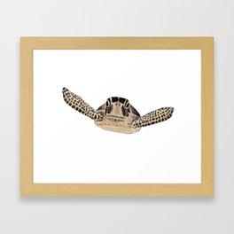 tortue marine Framed Art Print