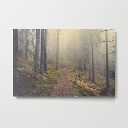Norwegian Woods Metal Print
