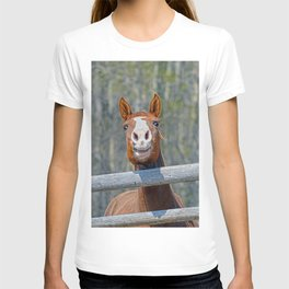 Horse Humour T-shirt
