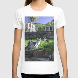 cats in the ruins T-shirt