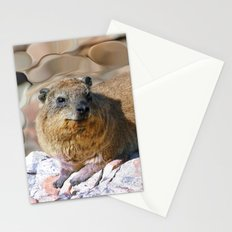 African Rock Hyrax Stationery Cards