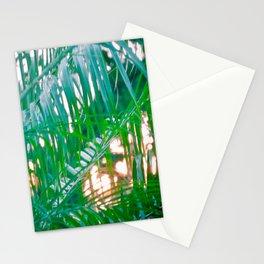 Sunset Through Palms Stationery Cards