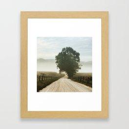 Cades Cove Tree of Life Landscape Photograph Gatlinburg Tennessee Framed Art Print