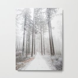 Mysterious road in a frozen foggy forest Metal Print