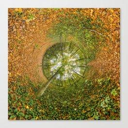 Le bois de Vincennes à l'automne - tunnel planète Canvas Print