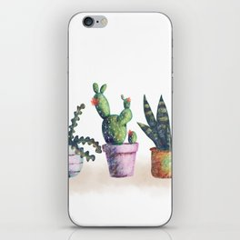 Cacti for cactuslovers iPhone Skin