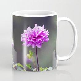 Longwood Gardens Autumn Series 106 Coffee Mug