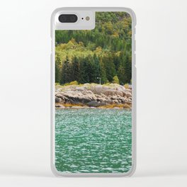 nature - colours Clear iPhone Case
