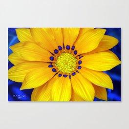 Bright Yellow Canvas Print