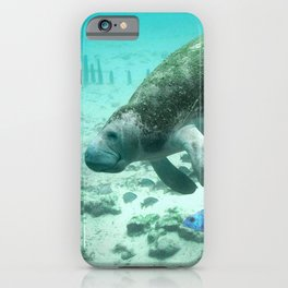 Large  Manatee iPhone Case