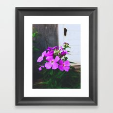 Untitled III Framed Art Print