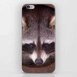 Raccoon iPhone Skin