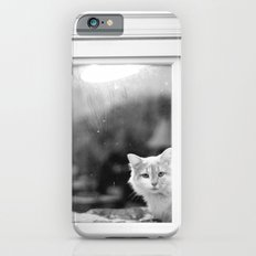 Curious Kitten Slim Case iPhone 6s