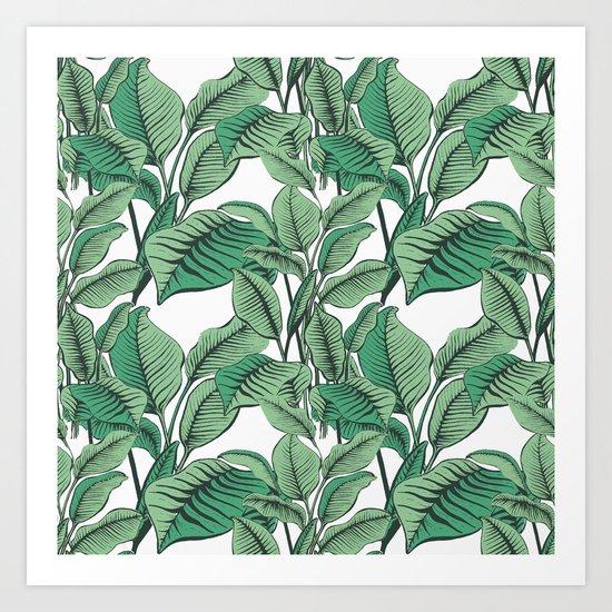 Exotic Tropical Banana Palm Leaf Print Art Print