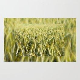 cereal plants grow plenty on field Rug