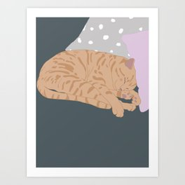 The Calico Sleeps Art Print
