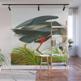 Great blue heron John James Audubon Vintage Scientific Bird Illustration Wall Mural