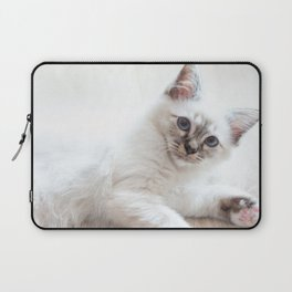 Portrait of white long hair birman cat with blue eyes. Laptop Sleeve