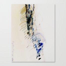 in ictu oculi Canvas Print