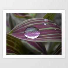 big water drop IV Art Print