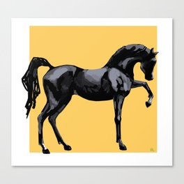 'Black Horse' Canvas Print