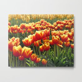 Tulips Are Better Than One Metal Print
