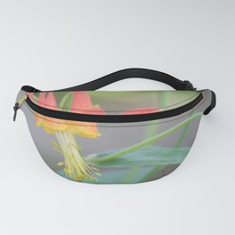 Pastel Columbine Afternoon Fanny Pack