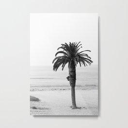 Malibu Palm Tree Metal Print