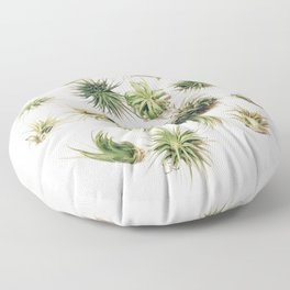 Air Plant Society Floor Pillow