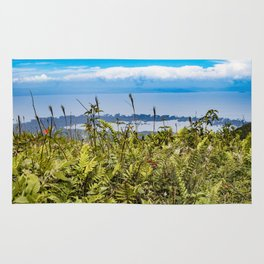 Looking Through Tall Grass and Wildflowers at the Lake on top of Mombacho Volcano, Nicaragua Rug